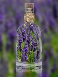 Lavendel in der Flasche