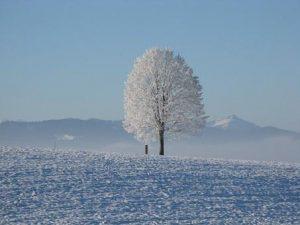 Winter und Gewicht