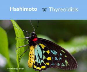 Hashimoto Thyreoiditis