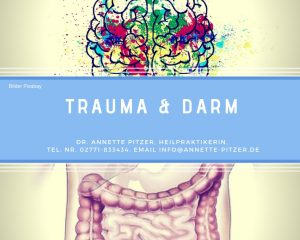 Trauma und Darm