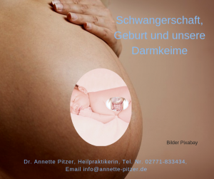 Schwangerschaft Darmkeime