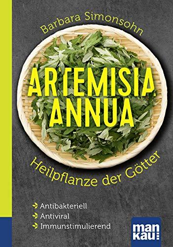 Artemisia Annua Heilpflanze der Götter